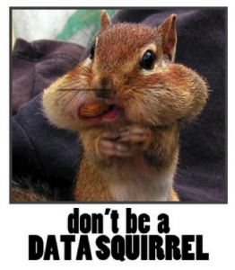 data-squirrel